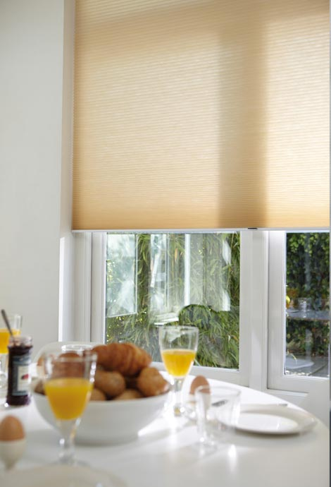 Duette Blinds